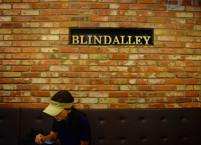 Blind Alley. We ordered more Bingsoo, and got Racoon food to feed our friends.