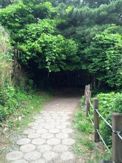 Beautiful pathway that took us around.